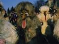 Današnji kurenti, 2005